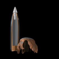 Winchester Ballistic Silvertip®